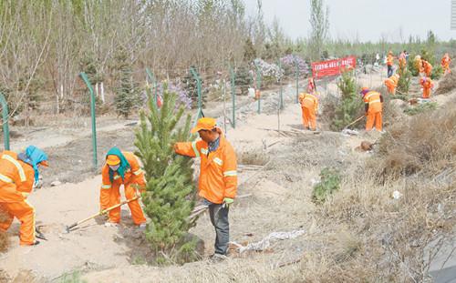 内蒙古高路乌海分公司大力推进下去高速公路绿化