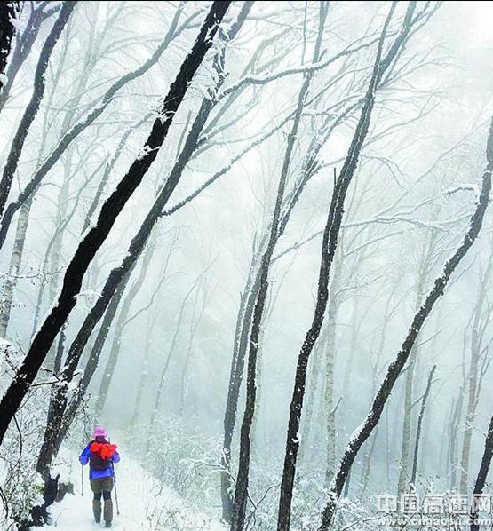 观北国风光 看林海雪原 就到灵寿五岳寨