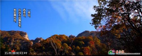 国庆旅游哪里去 五岳寨观景好惬意